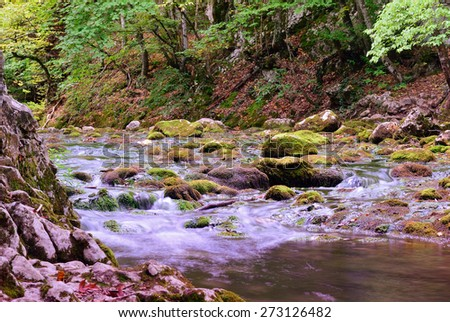 Mountain stream on the Crimean peninsula. Summer - stock photo