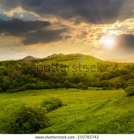 mountain summer landscape. trees near meadow and forest on hillside under  sky with clouds - stock photo