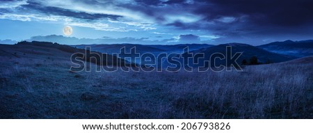 mountain summer landscape.trees near meadow on hillside under  sky with clouds at night in full moon light - stock photo
