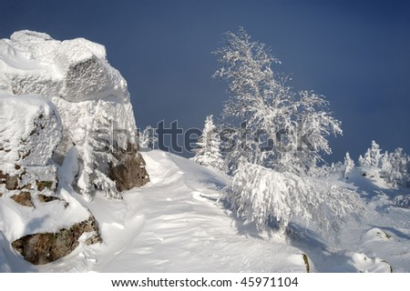 Mountain summit with a small fir tree in winter at Urals, Russia - stock photo