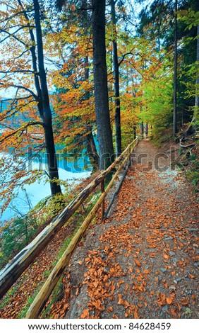 Mountain Synevir lake view through autumn tree twigs - stock photo