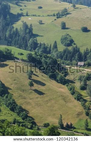 Mountain Tara - stock photo