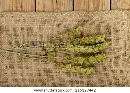 mountain tea on burlap texture