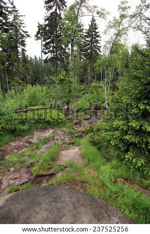 Mountain trail in a Grand Szczeliniec, Szczeliniec Wielki, Table Mountains in Poland - stock photo