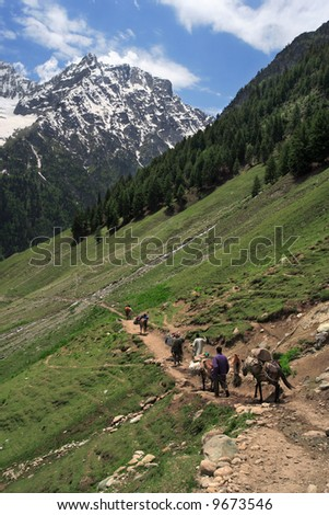 Mountain trekking in the Himalayas of Kashmir, India.  Four men and horses follow the trail to the base of a mountain. - stock photo