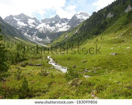 Mountain valley with glacial stream - stock photo