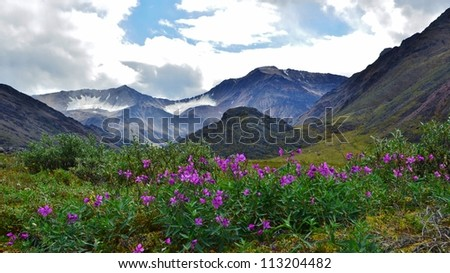 Mountain valley with glaciers - stock photo