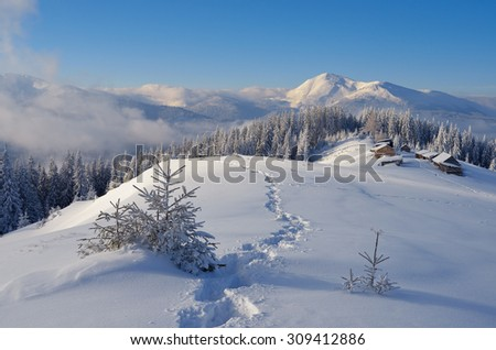 Mountain village of shepherds. Winter landscape. The path in the snow. Sunny day. Christmas look. Carpathians, Ukraine, Europe