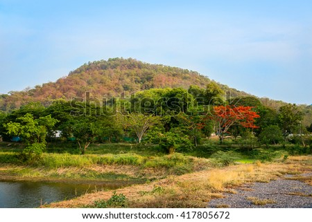 Mountain with fall color and blue sky in Thailand