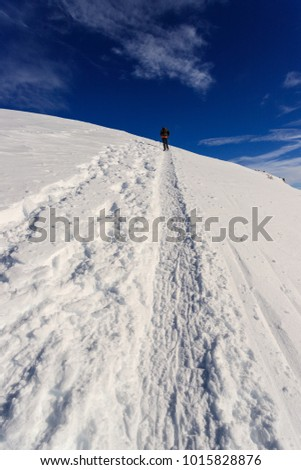 mountaineers uphill towards the Foisc lace, in the Leonine Alps (Switzerland)