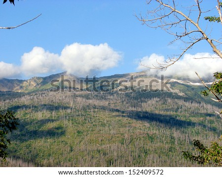 mountains after forest fire  - stock photo