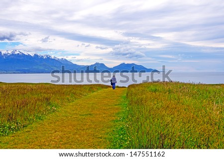 Mountains and Coastal Meadow above Kaikoura, New Zealand - stock photo