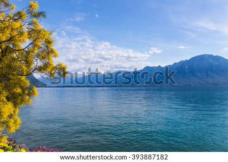Mountains and lake Geneva from the Embankment in Montreux. Switzerland - stock photo