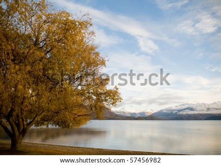 Mountains at sunrise with large autumn tree and lake in foreground