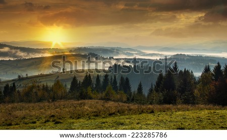 Mountains Carpathians. Coniferous forest in the high mountains at sunset with a dense fog. - stock photo