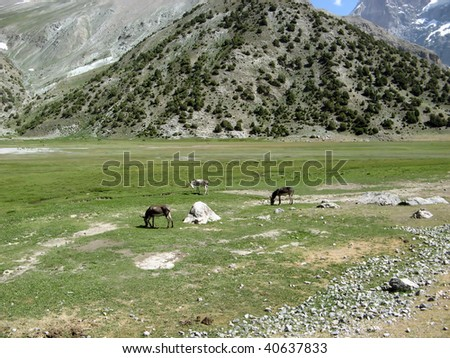 Mountains. Expedition on South-Weast Pamir. - stock photo