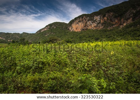 Mountains landscape of mogote in Vinales Valley in Cuba. - stock photo