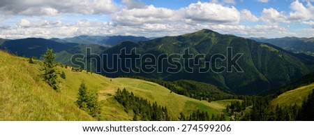 Mountains landscape panoramic image with pine forest and a vast mount and a herd of cattle at the bottom - stock photo