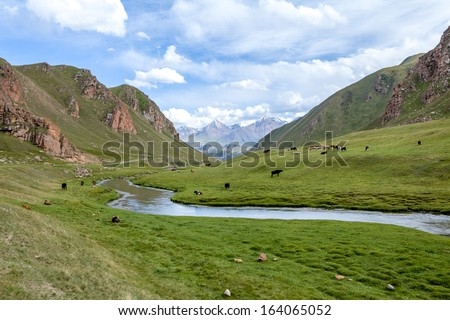 Mountains, river and farm animals, Tien Shan, Kyrgyzstan - stock photo