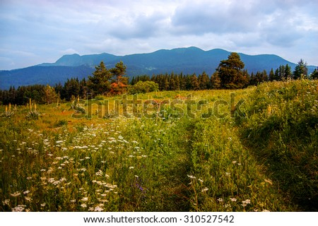 mountains view, beautiful landscape, summer, sunny day, peaceful landscape - stock photo