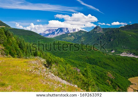 Mountains with green forest landscape - stock photo