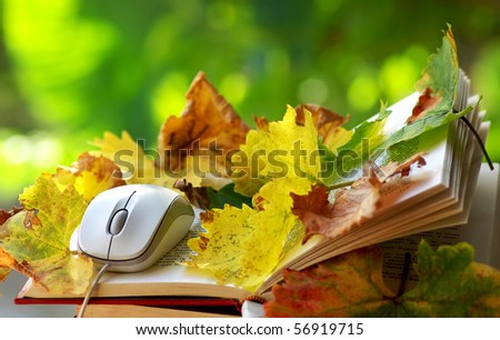Mouse and leaves on book. - stock photo