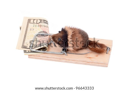 Mouse and money in tap, isolated on white background - stock photo