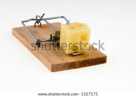 Mouse Trap with cheese. - stock photo