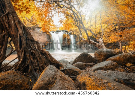 Moving bright mud waterfall in autumn forest surrounded by orange tree. Sunlight shining through foliage and leaves on top. - stock photo