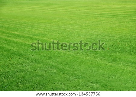 mowed Football ground, green lawn background - stock photo