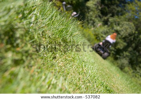 Mowing a lawn - stock photo