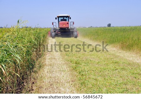 Mowing alfalfa for hay on a California farm