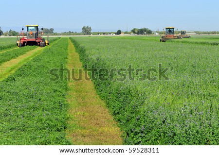 Mowing alfalfa for hay on a Central California farm