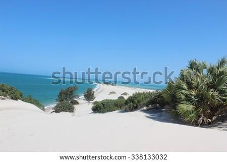 Mozambican Beach  - stock photo