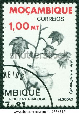 "MOZAMBIQUE - CIRCA 1978: A stamp printed in Mozambique shows a agricultural crop  ""Cotton (Gossypium)"", circa 1978 - stock photo"