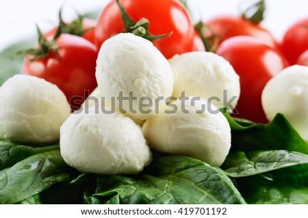 mozzarella cheese balls, ripe cherry tomatoes and greens on the white background. horizontal - stock photo