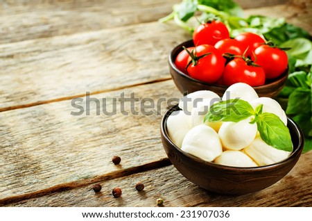 mozzarella cheese on a dark wood background. tinting. selective focus on Basil - stock photo