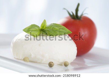 Mozzarella cheese with tomatoes  and basil - stock photo
