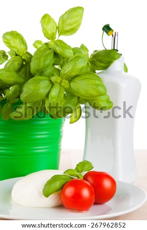 Mozzarella with tomatoes, basil and olive oil - stock photo