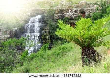 Mpumalanga, South Africa - stock photo