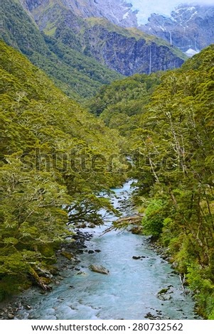 Mt. Aspiring National Park, New Zealand - stock photo