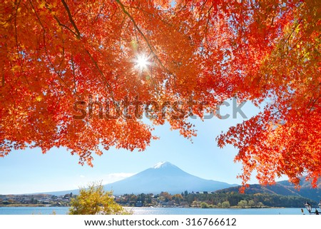 Mt. Fuji and red leaves - stock photo