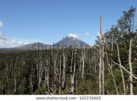 Mt Ngauruhoe or Mt Doom from Lord of the Rings, New zealand - stock photo