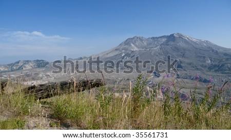 Mt St Helens Panorama - stock photo