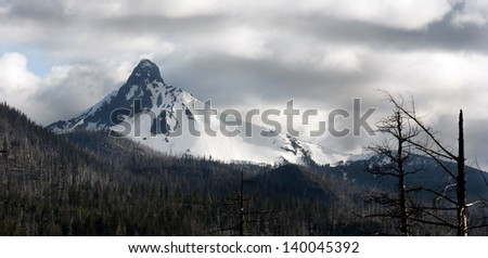 Mt. Washington stands in the clouds after a recent forst fire - stock photo