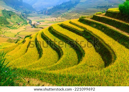 MUCANGCHAI, LAOCAI, VIETNAM - OCTOBER  6, 2013 - Rice terraces on the mountain. Here is a famous tourist attraction, rice terraces and H'Mong ethnic people. - stock photo