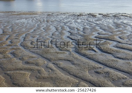 Mud beds at low tide on the River Thames in London, England