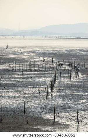 mud flats - stock photo