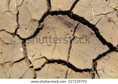 Mudcracks emerged after watering in the summer garden - stock photo