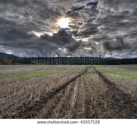Muddy Tire Tracks Trail Dug Into Agriculture Cultivated Farm Land Field
